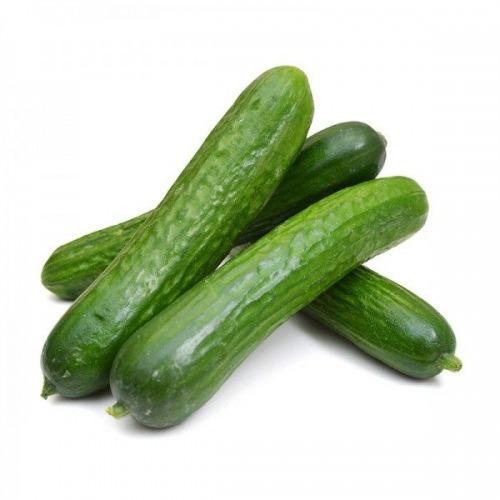 خیارسبز گلخانه ای هرکیلو ∓ 50 گرم